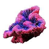 perfeclan Pequeño Adorno de Acuario de Arrecife de Coral Artificial de 5 Pulgadas - Resina Duradera Segura para