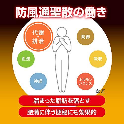 【第2類医薬品】新・ロート防風通聖散錠満量264錠