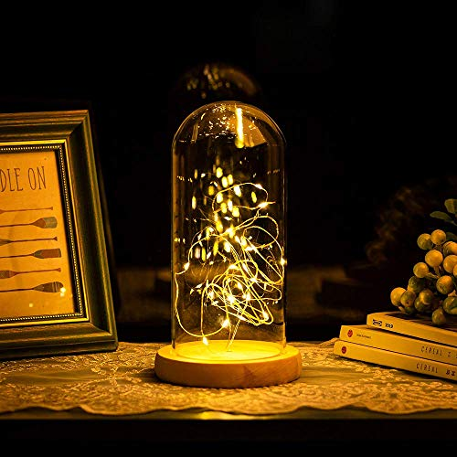 Glasseam Cloche de Cúpula de Vidrio Grande Transparente Cúpula de Cristal con Luz LED de Hadas Luces LED en Cúpula de Cristal para la Pantalla de La Lámpara