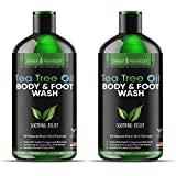 Antifungal Tea Tree Oil Body Wash - Made in USA - Helps Treat Eczema, Ringworm, Body Odor, Jock Itch, Acne, Toenail Fungus & Athlete - Best Antibacterial Soap For Skin Irritations. (2 Pack)