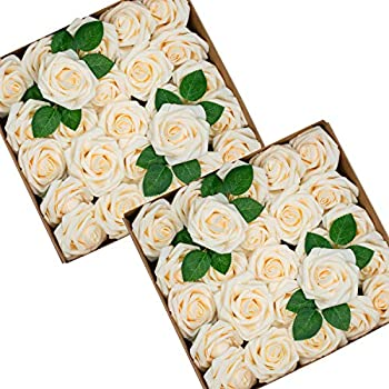 Best cream colored roses Reviews