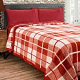 Poyet Motte Rivoli Solid 400GSM 100% Virgin Wool Blanket, Medium/Heavy Weight, Machine Washable (Red/Natural Plaid, Full/Queen Size)