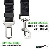BELISY Hunde-Sicherheits-Gurt fürs Auto – höchste Sicherheit für Dich und Deinen Hund – mit besonders elastischer Ruckdämpfung für maximalen Komfort – passend für alle Hunderassen – höchste Markenqualität - 5