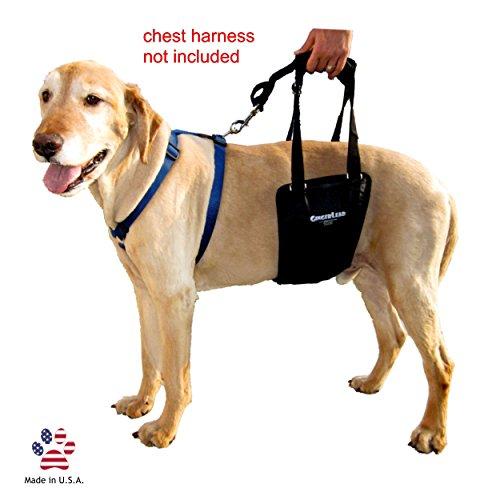 GingerLead Dog Support for Back Legs