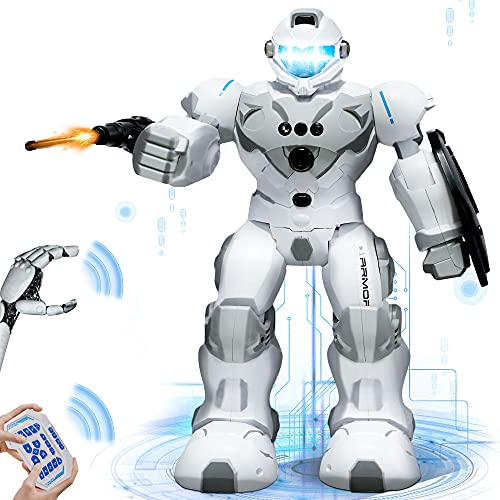 W Q Robots for Kids, Smart Programmable Remote Control Robot Toy with Gesture Sensing Interactive Walking Singing Dancing Led Eyes RC Robots Gifts for Boys Girls