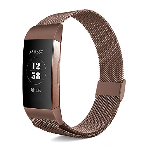 Pedfsy Metal Armband Compatible with Fitbit Charge 3/Charge 3 SE, Mesh Stainless Steel Replacement Sport Bracelet Strap Wristbands Accessories with Magnet Lock for Women Men