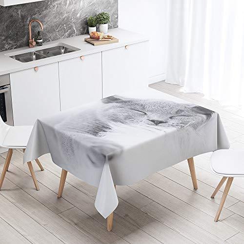 Fansu Rechteck Tischdecke Polyester 3D Katze Stil,Wasserdicht Tischwäsche Pflegeleicht Abwaschbar Tischtuch-Viele Größe Farbe Wählbar (Graue Katze,100x140cm)