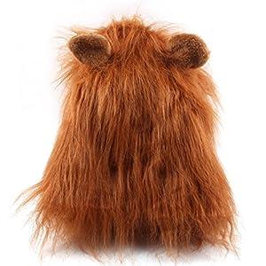 Costume humoristique pour chien - Crinière de lion - Pour Exposition canine Fête Carnaval
