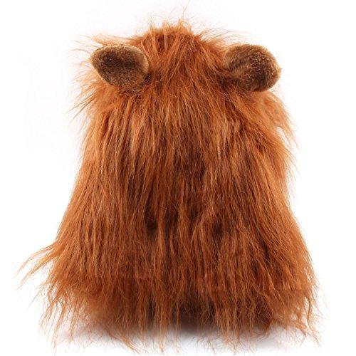 Beyond Dreams® Costume de chien drôle | Crinière de lion | Perruque de crinière de lion pour chiens Dog show | fête carnaval chien spectacle costume