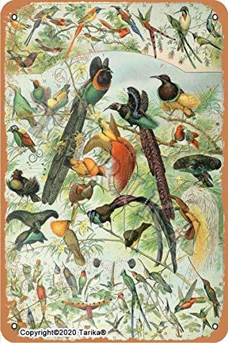 Cartel decorativo de hierro con diseño de avenada del bosque de pájaros,...