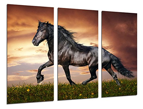 Wandbild - Schwarzes Pferd, Naturlandschaft, Tiere, 97 x 62 cm, Holzdruck - XXL Format - Kunstdruck, ref.26459