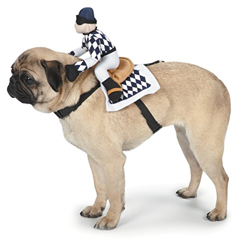 Zack and Zoe Show Jockey Saddle Dog Costume