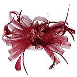 Morran Tocado Vintage Diadema para Las Mujeres Encantadora Diadema de Flores Grandes Malla Mesh Plumas Pinza de Pelo y Sombrero de Cóctel Ornamento Partido Foto Tocado Sombrero