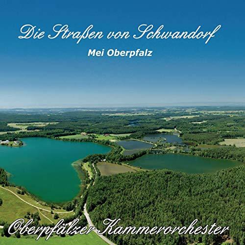 Intro (Mein Schwandorf)
