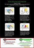 mural stickers Adesivi Scorpione Abarth Sport Stripes Adesivo per 500 Turbo Abarth Tuning Adesivi Auto Decorazioni Accessori 20 X 20 Rosso