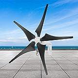 Generatore eolico a turbina, potente generatore eolico a cinque pale eoliche 400 W 650 RPM...