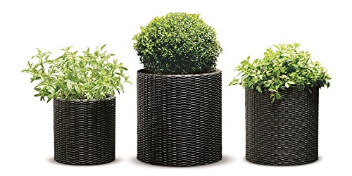 Keter Resin Wicker Cylinder Flower Pot Set of 3 Small, Medium, and Large Planters with Drainage Plugs for Outdoor or Indoor Plants, 3 sizes, Brown