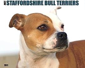 Staffordshire Bull Terriers 2011 Wall Calendar