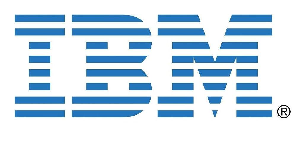 架空の記事構成日本アイ?ビー?エム Broadcom 10Gb GEN2 2ポート イーサネット拡張カード(CFFh) for IBM BladeCenter 46M6168