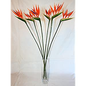 6 x Small Bird of Paradise / Strelitzia Artificial Stems by Ola Flowers