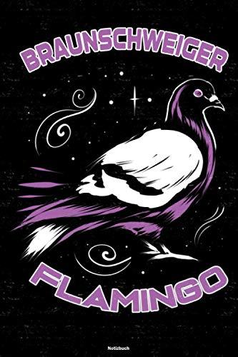 Braunschweiger Flamingo Notizbuch: Braunschweig Stadt Journal DIN A5 liniert 120 Seiten Geschenk