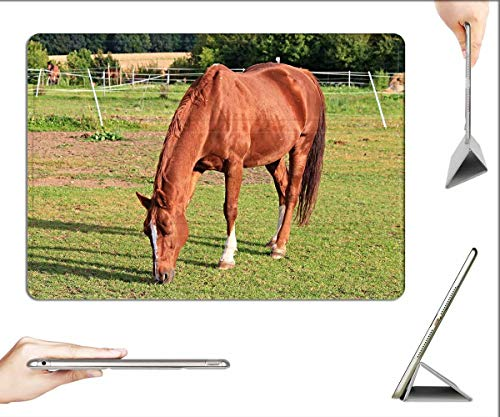 Case for iPad Pro 12.9 inch 2020 & 2018 - Horse Paddock Coupling Pasture Animal Brown Graze