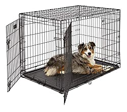 Person In A Dog Cage