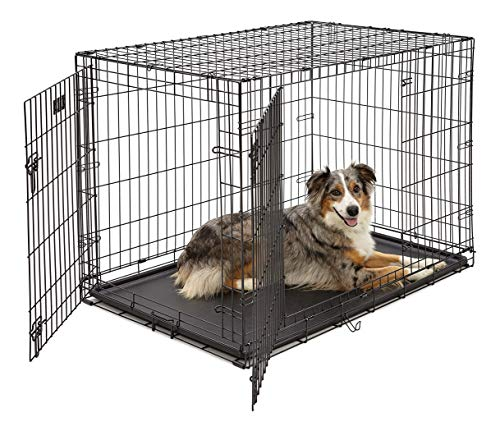 Large Dog Crate 1542DDUMidWest ICrate Double Door Folding Metal Dog Crate Large Dog, Black, 42-Inch...