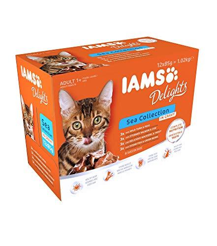 IAMS Delights Sea Collection Katzenfutter Nass - Multipack mit Fisch Sorten (Lachs, Thunfisch, Forelle, Seefisch) in Sauce, Nassfutter für Katzen ab 1 Jahr, 12 x 85g