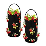 Bolsas De Plantación De Fresas, 2 Macetas Colgantes Resistentes, Bolsas De Plantación De Vegetales De Jardín De Tela No Tejida Transpirable, Negro (38 X 22 cm)