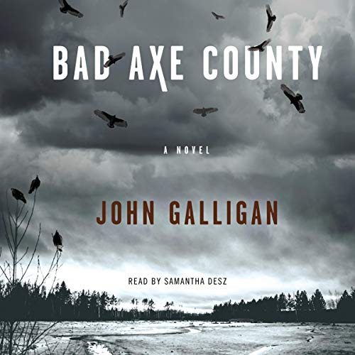 Bad Axe County audiobook cover art
