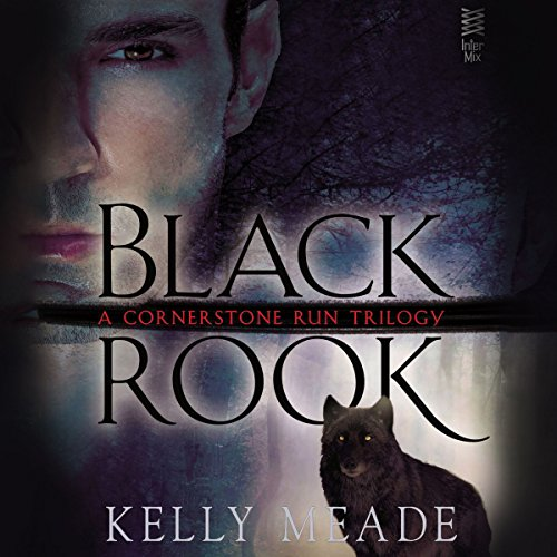 Black Rook audiobook cover art
