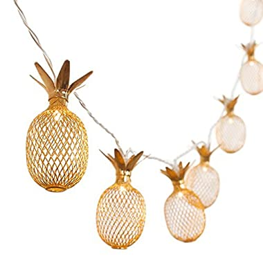 Ling's moment 10-Light 5Ft Gold Metal Mesh Pineapple LED lantern String Lights Battery Powered Novelty Fairy Lights For Bedroom Wedding Patio Party Festival Decoration (Warm White)