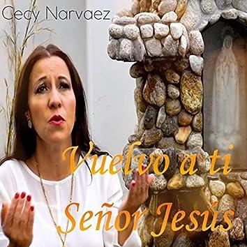 Vuelvo a ti señor Jesús