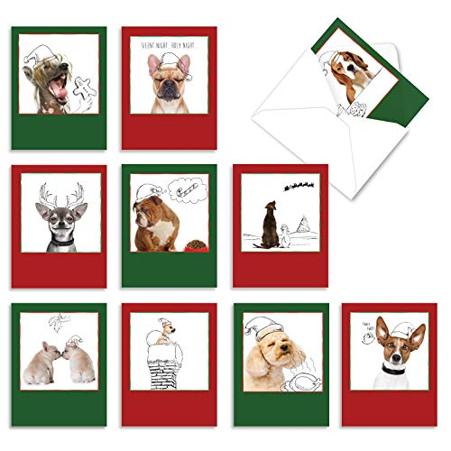 The Best Card Company - 10 Blank Christmas Note Cards - Pet Cats and Dogs, Boxed Xmas Animal Cards for Kids (4 x 5.12 Inch) - Holiday Dogs and Doodles M6582XSB