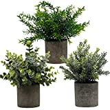 Zcaukya Small Potted Artificial Plants, Artificial Eucalyptus Plants Fake Rosemary 9.5' Plastic Greenery Plants for Home Office Garden Decor, Indoor & Outdoor, Set of 3