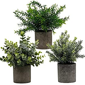 Zcaukya Small Potted Artificial Plants, Artificial Eucalyptus Plants Fake Rosemary 9.5″ Plastic Greenery Plants for Home Office Garden Decor, Indoor & Outdoor, Set of 3