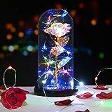 KIPIDA Rose Éternelles, Rose sous Cloche, la Belle et la Bête Rose, Faux Rose Abat-Jour en Verre LED Ornement de Décor à la Maison Cadeau Fête des mères, Décor de la mariée Amie Anniversaire Mariage