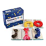 Gnawly Dog Chew Toys for Aggressive Chewers, 5 Pack, Flavor Infused Heavy Duty Rubber Bones, Ring, Antlers, Ropes and Animal, Indoor and Outdoor Play for Medium to Large Breeds