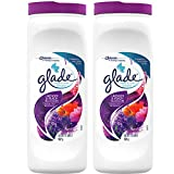 Best Carpet Deodorizers - Glade Carpet and Room Powder, Lavender and Peach Review