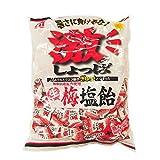 桃太郎製菓 激しょっぱ生梅塩飴 1kg