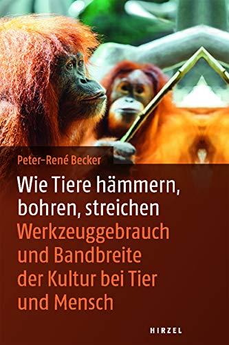 Wie Tiere hämmern, bohren, streichen: Werkzeuggebrauch und Bandbreite der Kultur bei Tier und Mensch