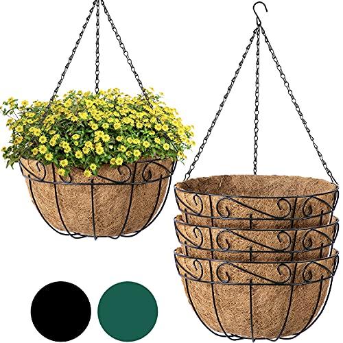 Plant flowers in metal hanging baskets