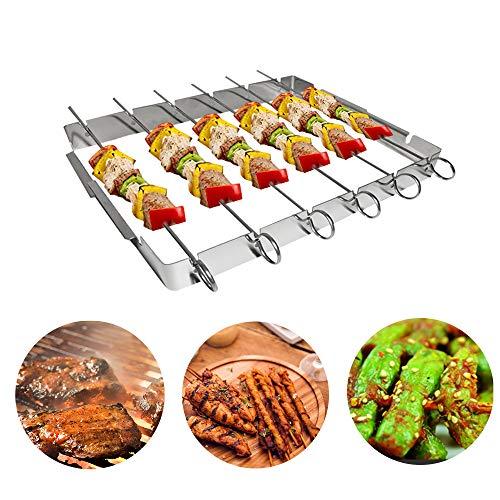 Daymi Grillspieße Edelstahl, Edelstahlgrill, Grillspieße, Fleischspieße, Grill-Zubehör, Gasgrill BBQ, Verschenken Sie 2 Silikonbürsten