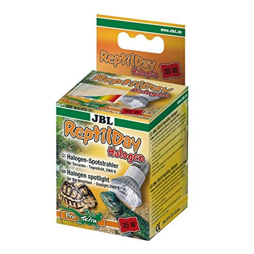 JBL ReptilDay Halogen 61841 Halogenstrahler mit Tageslichtspektrum, E27, 35 W
