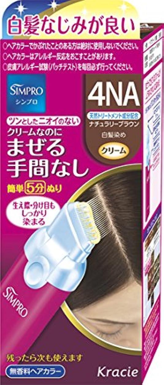 調整可能メッシュやろうシンプロ ワンタッチ無香料ヘアカラー 4NA