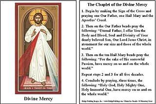 Divine Mercy Prayer Card - Set of 100