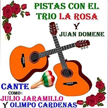 Pistas con El Trio la Rosa y Juan Domene