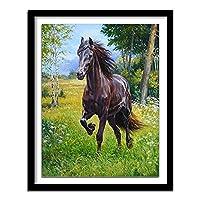 大人のためのDIY5Dダイヤモンドペインティングフルキット ダイヤモンドキットダイヤモンドペインティングフルドリルDIY5Dダイヤモンドアート 草の上でギャロッピング黒い馬(30x40)CM