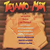 Tejano Megamix (Long Version)